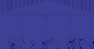 PakAIMS Logo